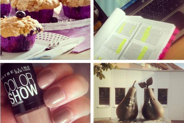 instagram-wr-35