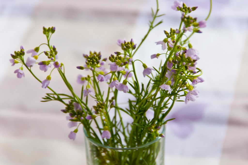 Vollkornspaghetti-Deko-Blumen