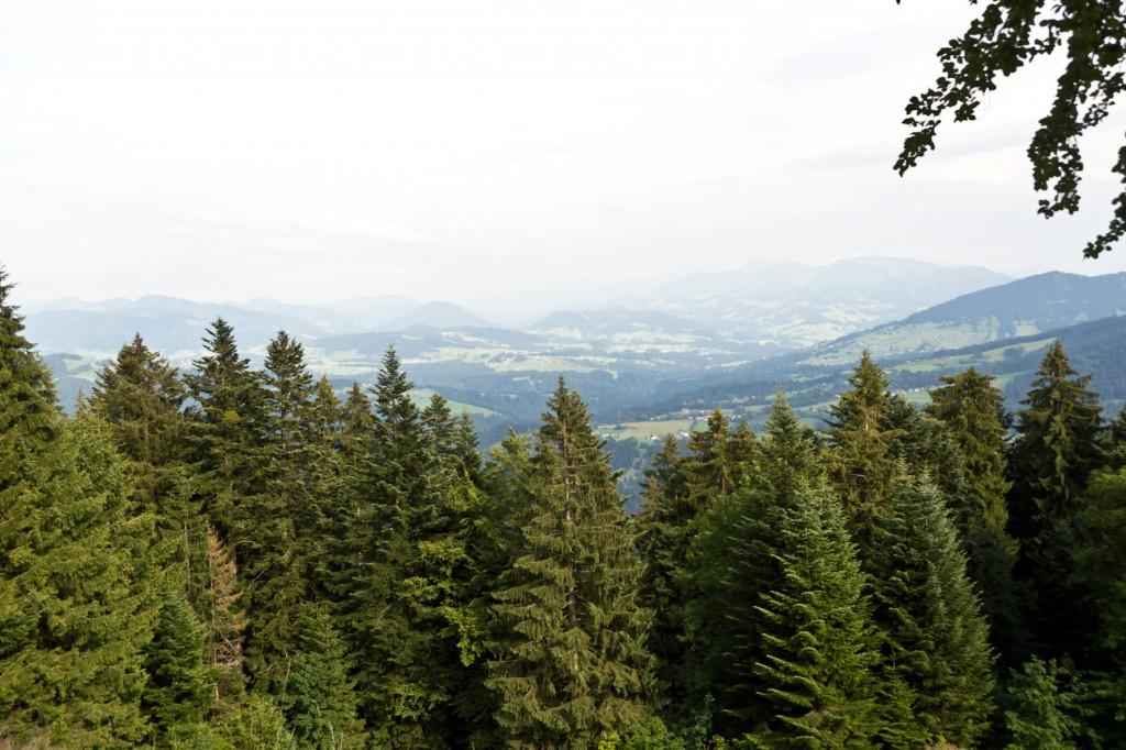 Bodensee-Urlaub Pfänder