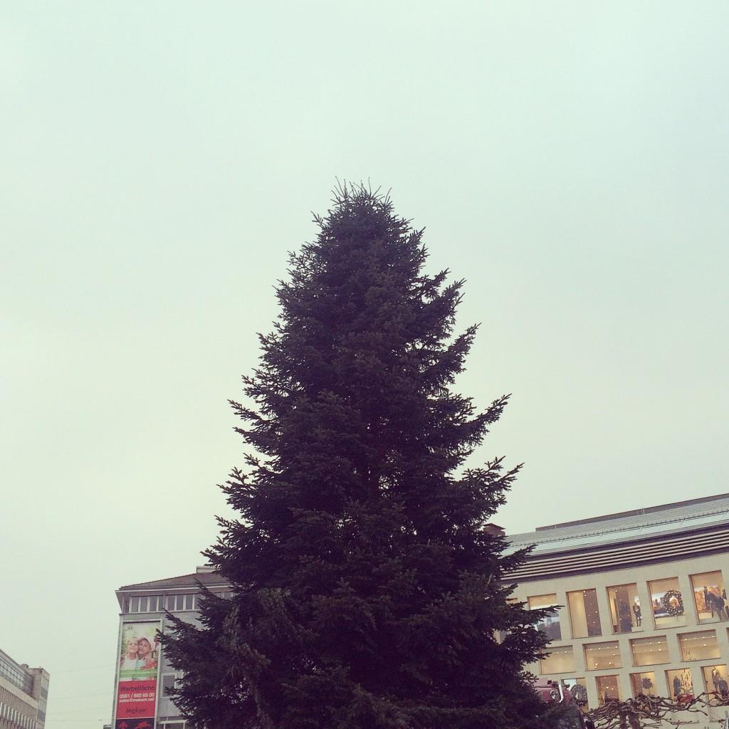 Weihnachtsbaum Kassel