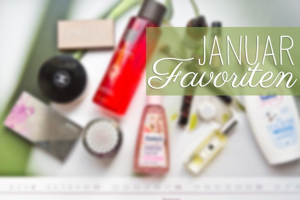 Januar-Favoriten-15-12