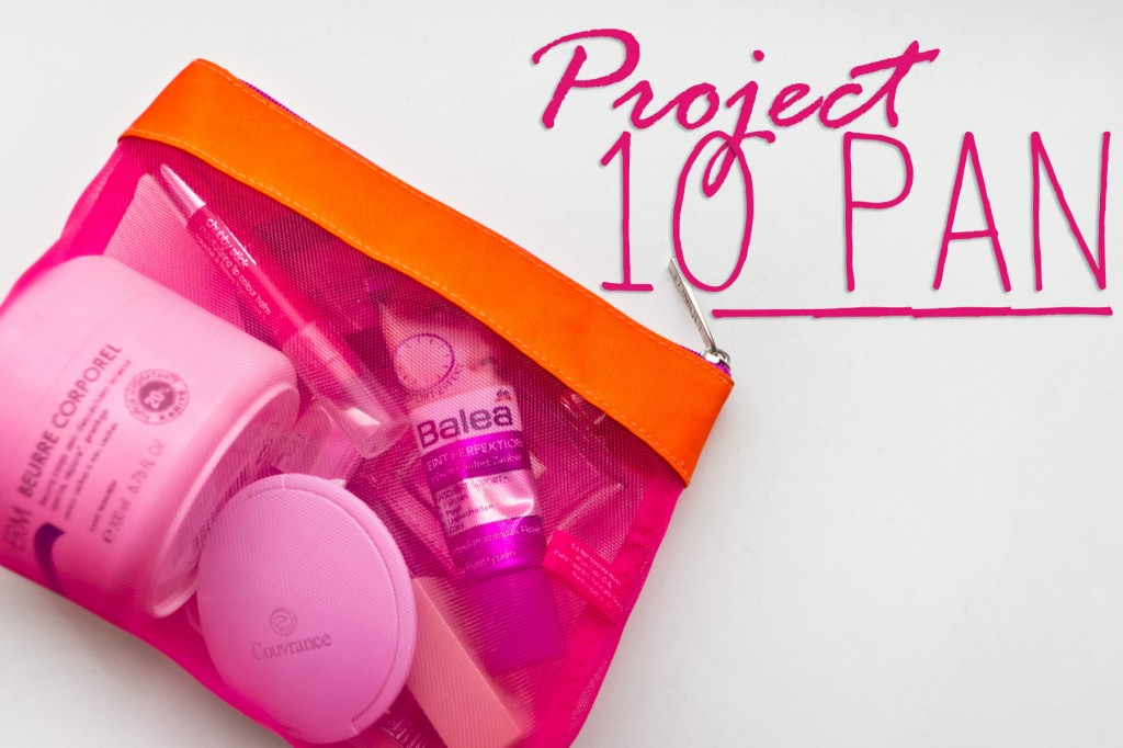 Project-10-Pan-01