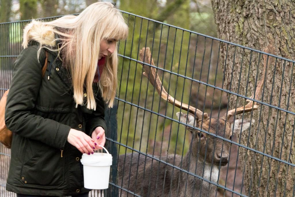 Tierpark-Fulda-28