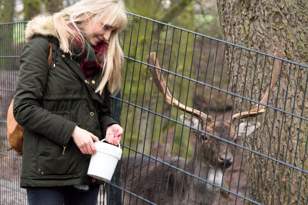 Tierpark-Fulda-29