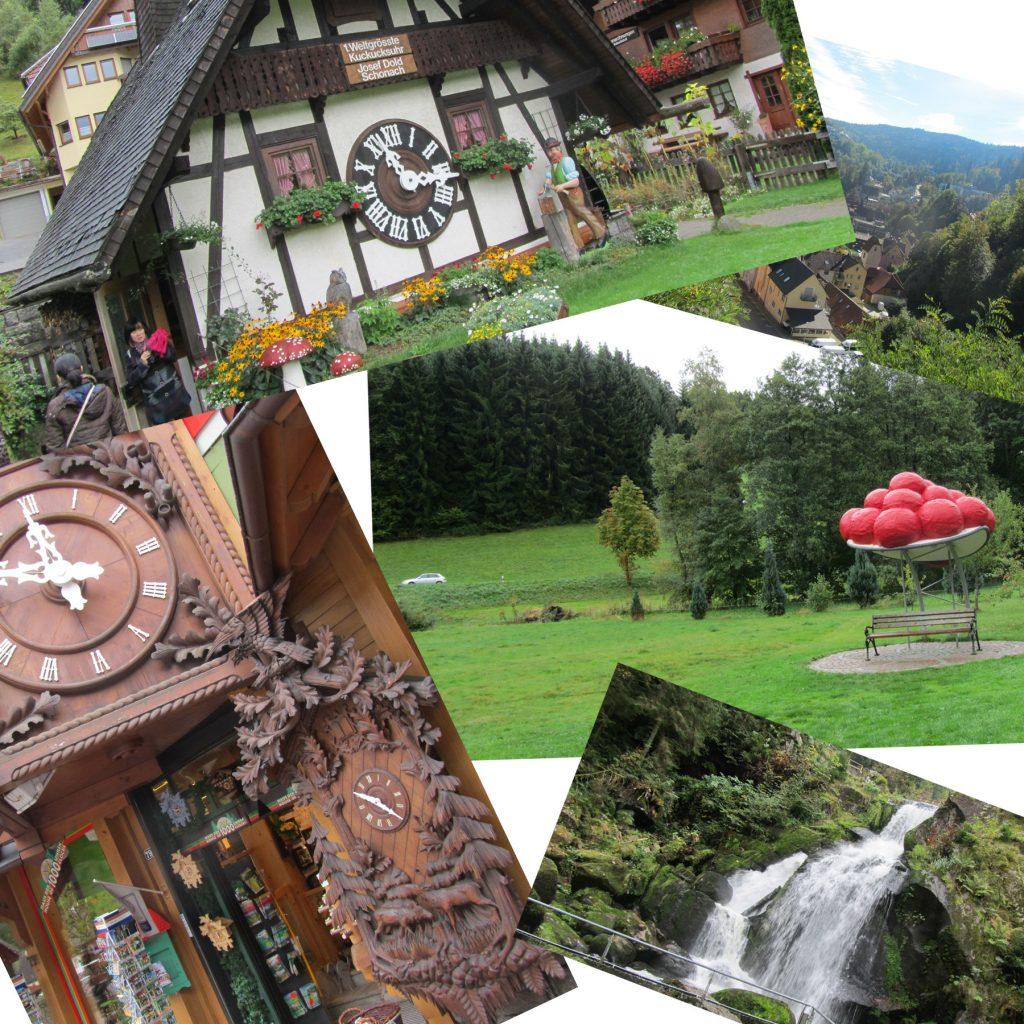 Schwarzwald-08