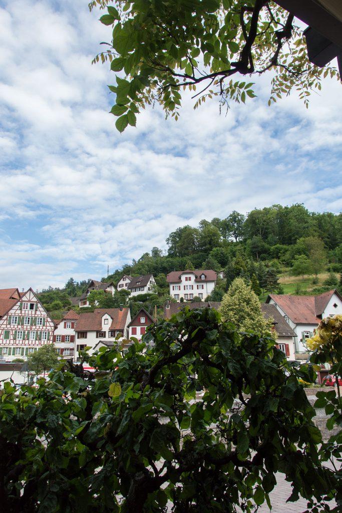 Urlaub-Schwarzwald-Juli-31