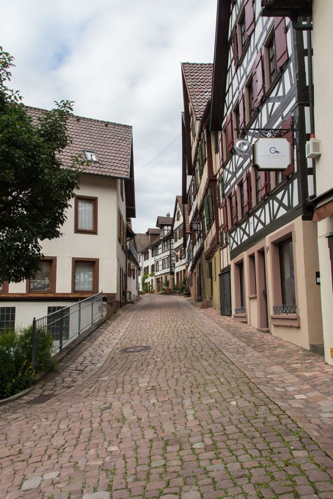 Urlaub-Schwarzwald-Juli-33