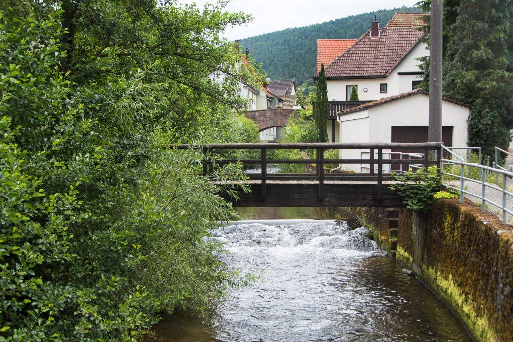 Urlaub-Schwarzwald-Juli-42