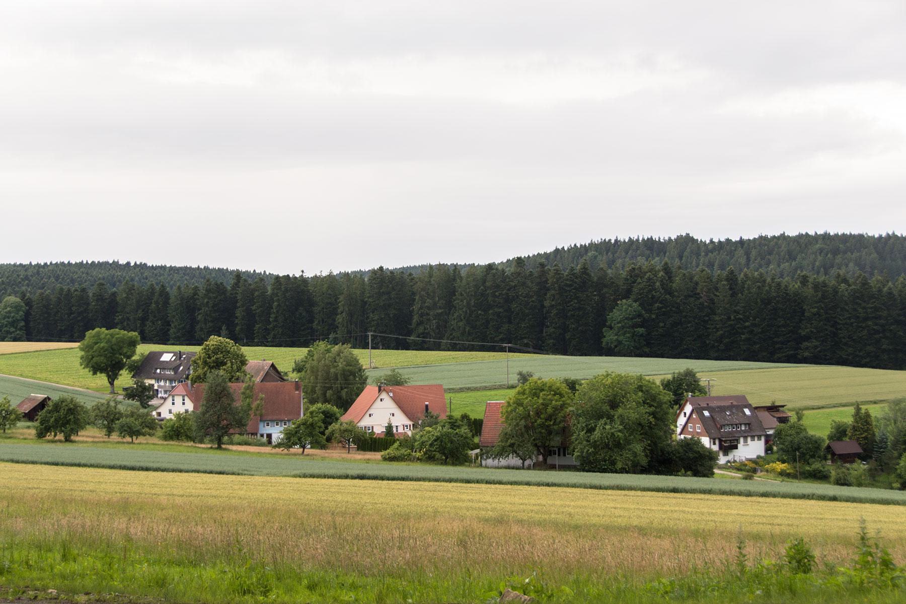 Urlaub-Schwarzwald-Juli-51