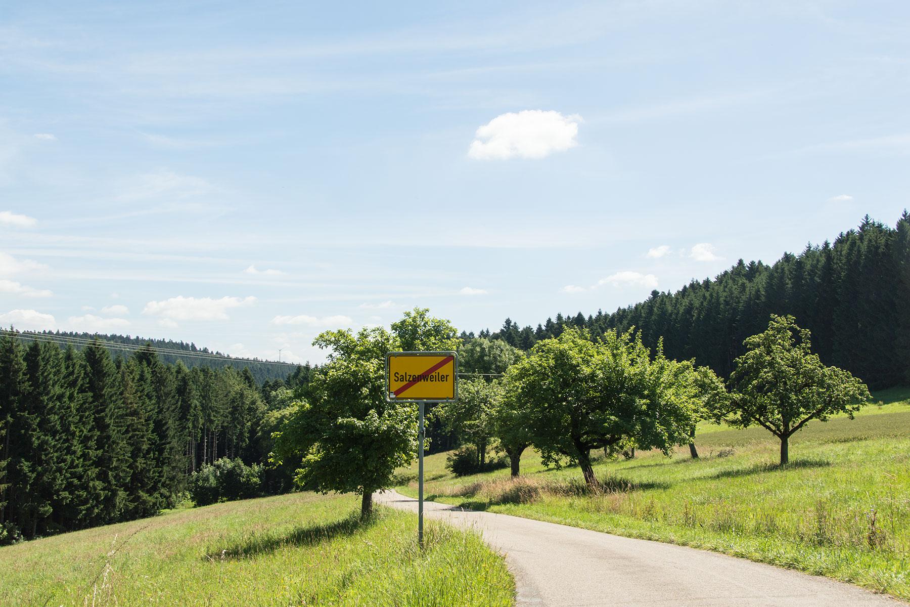Urlaub-Schwarzwald-Juli-52