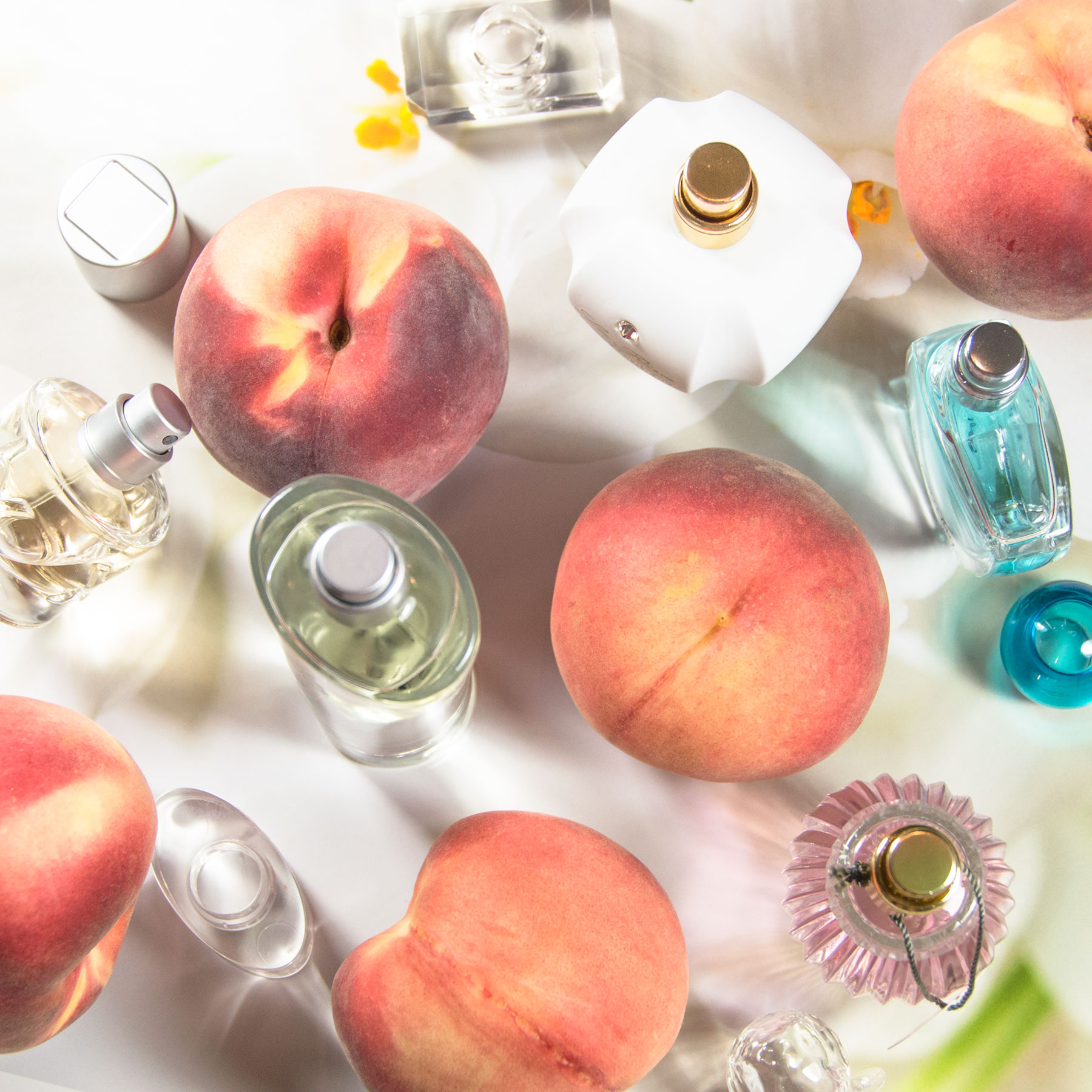 Billige Parfums