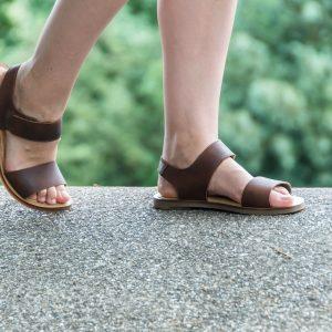 El Naturalista Footway