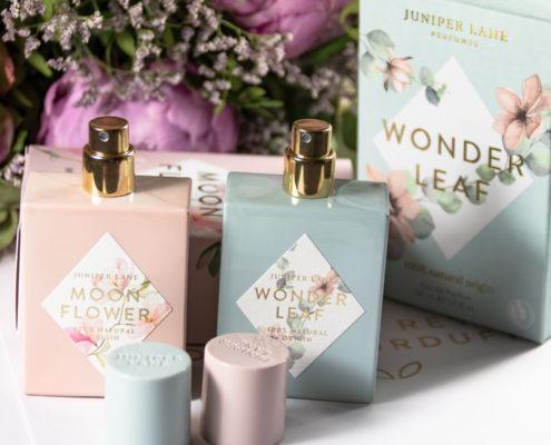 Juniper Lane Moonflower Wonderleaf
