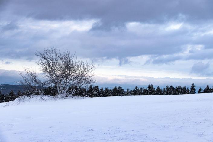 Winter Schnee Wasserkuppe Rhön