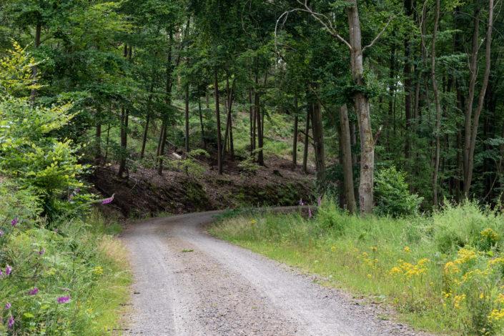 Urlaub Rotenburg an der Fulda Altmorschen Fuldatal wandern