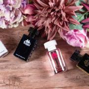Kappa Parfum black blue white pink