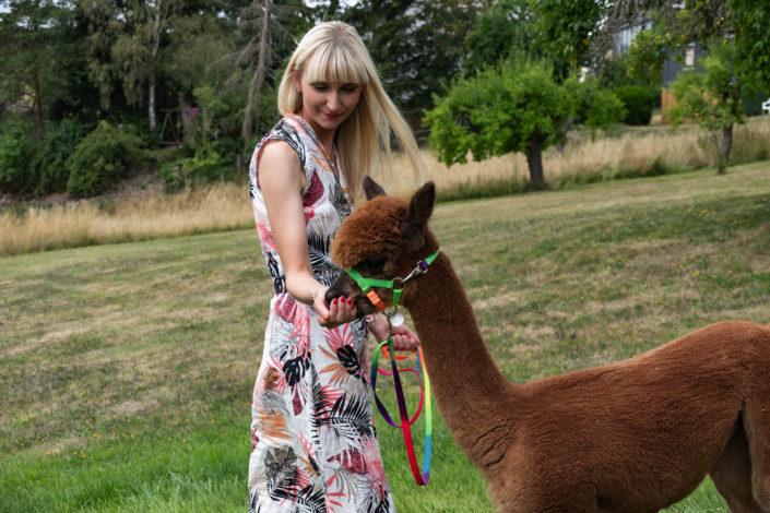 Urlaub Ferien Ferienwohnung Alpakas Hunsrück